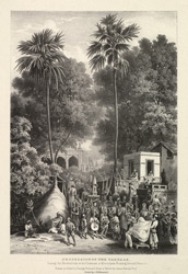 Procession Of The Tazeeas